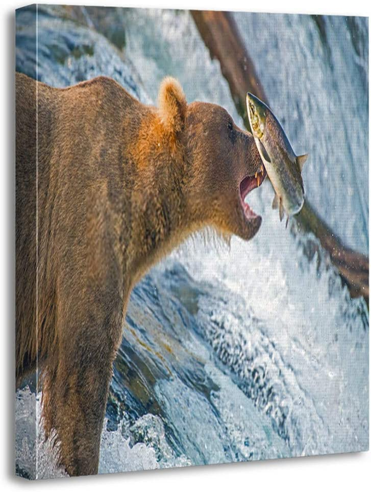Benxii Canvas Print Adult Coastal Brown Bear Feeds Salmon as They Make Their Way up Over Waterfalls Wooden Framed Wall Decor Art Painting Home Artwork Bedroom Living Room Easy to Hang 16x20 Inches