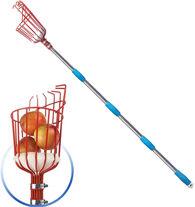 GLORYA Fruit Picker - 8ft Length Adjustable Lightweight Fruit Catcher Tool - Stainless Steel Apple Orange Pear Mango and Other Fruit Tree Picker Pole with Basket