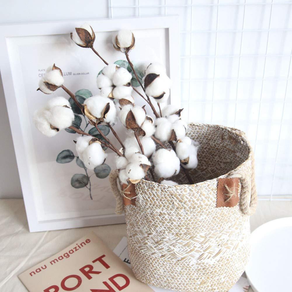 Kasien Cotton Stems Flower,21 inch Naturally Dried Cotton Stems Farmhouse Style Artificial Flower Filler Floral Decor (3PCS)