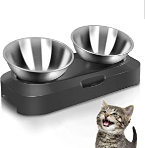 AYADA Raised Cat Food Bowl Set, Stainless Steel Cat Dish for Food Water Anti Vomiting Elevated with Stand Ergonomic Lifted Slanted Tilted 15 Angle Metal Double Kitty Kitten Wet Food Bowl 2 Pet Bowl