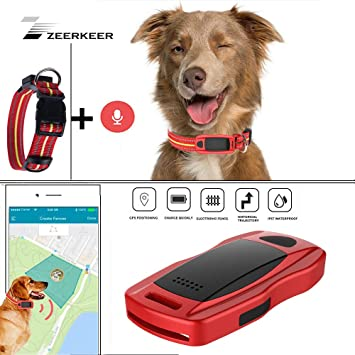 Amazon.com: ZEERKEER rastreador GPS para mascotas ...
