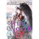 True North (Book 1 of 2)