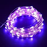 ILOVEDIY 2M 20LEDs Battery Operated LED Waterproof Copper Wire String Fairy Lights (2M, purple)