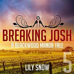 Breaking Josh 5 Audiobook