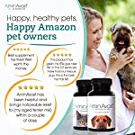 AminAvast Kidney Support Supplement for Cats and Dogs, 300mg - Promotes and Supports Natural Kidney Function - Supports Health and Vitality - Easily Administered - 60 Sprinkle Capsules 12
