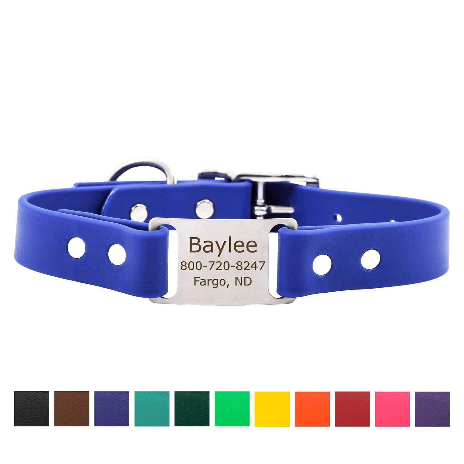dogIDS Blue Personalized Waterproof Dog Collar with Engraved ScruffTag Nameplate - Smell Resistant Collar (1 Inch Wide - Fits Neck Sizes of 16-20 Inches) by dogIDS