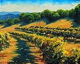 Six Sigma Vineyards