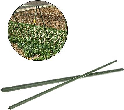 Rtengtunn Strumento di Giardinaggio della Canna del Bastone del Fiore del Bastone di Sostegno dei bastoni di Sostegno della pianta da Giardino di 60cm 11MM