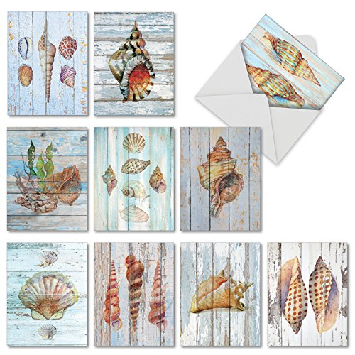 -  10 Boxed 'Seashell Driftwood' Note Cards with Envelopes - Assorted Blank Greeting Cards - Stationery Notecard Set for All Occasions - Weddings, Birthdays, Thank You 4 x 5.12 inch AM6118OCB-B1x10