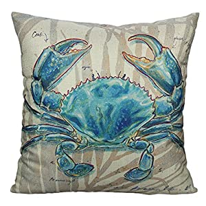 61ovP4TzbCL._SS300_ 100+ Coastal Throw Pillows & Beach Throw Pillows