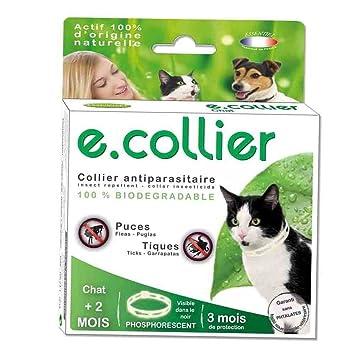 Collar antiparásitos fosforescente pulgas/garrapatas – 35 cm – para gatos de más de dos meses.: Amazon.es: Productos para mascotas