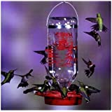 BEST-1 HUMMINGBIRD FEEDER w/32 oz. GLASS BOTTLE, Made in USA