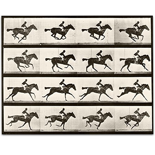 Lone Star Art 1887 Muybridge's Horse Galloping Vintage Print - 11x14 Unframed Print - Perfect Stable or Farm Decor
