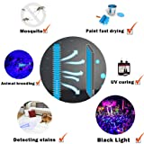 365nm USB5V Black Light Effect Stage Bar Haunted