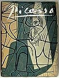 Picasso, Gabriel Potter, 1555217648