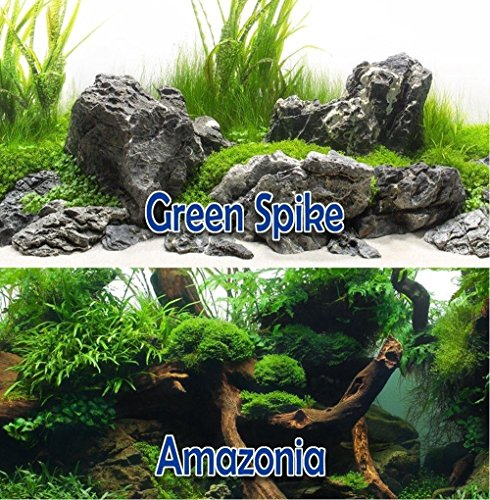 Sugar Cone Adjustable Bar (Green Spike / Amazonia 12