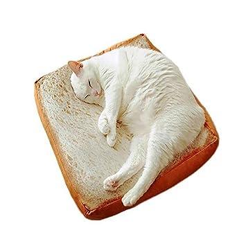 DAN Estilo creativo de pan tostado para rebanar Esteras para mascotas Cojín Cama de colchón suave y caliente para gatos y perros , 60*60cm: Amazon.es: ...