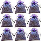 12-pack of French Lavender Filled Sachets by Zziggysgal