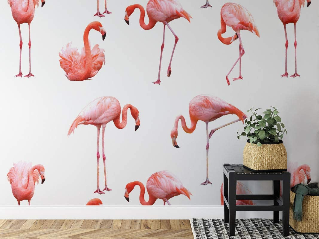 The Inspire Decor Papel pintado Peel and Stick pared decoración extraíble papel pintado autoadhesivo repetir patrón flamenco pájaros impresión papel pintado
