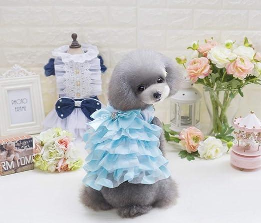 WXPC Primavera y Verano Ropa para Mascotas Perro Gato Princesa Vestido Mascota versión Coreana del Lindo Velo Azul de Moda, S: Amazon.es: Productos para mascotas