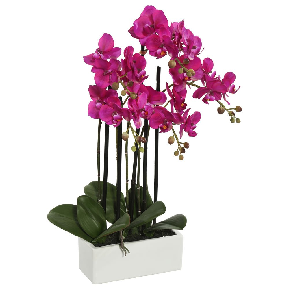Vickerman FC170601 Everyday Orchid Arrangement