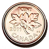 Canada 2011 1 Cent Nice Uncirculated Canadian Penny Non Magnetic BU from Roll (Shipped in a 2x2 Holder)