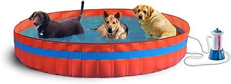 New Plast 3100 K – My Dog Pool Piscina para Perros con Filtro, 305 ...