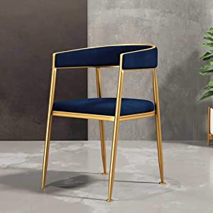 Coffee Chairs, Dining Chairs, Kitchen Chairs Fabric Solid Metal Chairs Suede Seat Dining Room Living Room Bedrooms Shopping Malls Sun Lounger (Color : Blue)