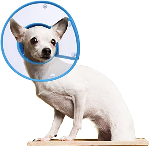 PETBABA-Cat-Cone-Collar-in-Recovery