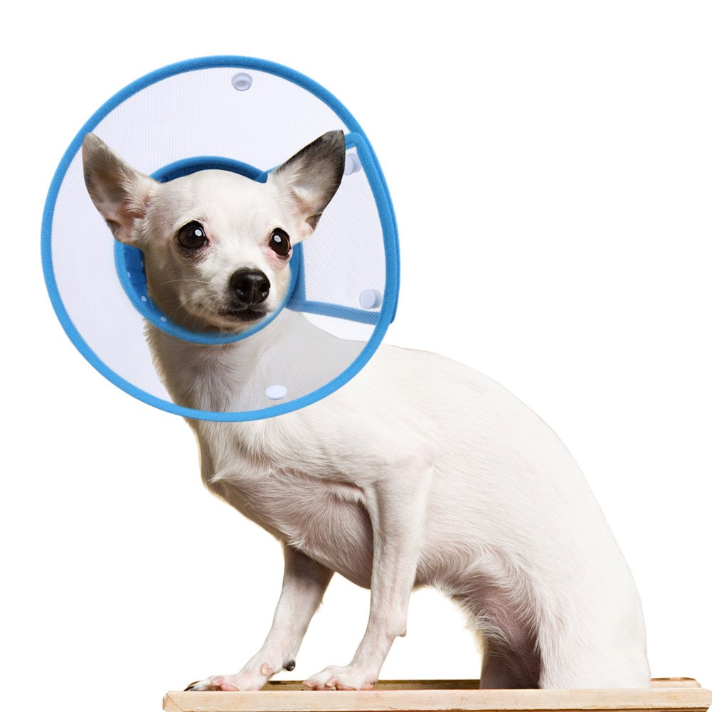 PETBABA Recovery Collar, Clear Cone Not Block Vision, Soft Padded Elizabethan E-Collar Good to Protect Neck, Fit Puppy Dog Kitten Cat Pet in Surgery Remedy Grooming - M in Blue