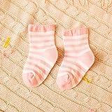 Unisex Baby 5 Pack Socks