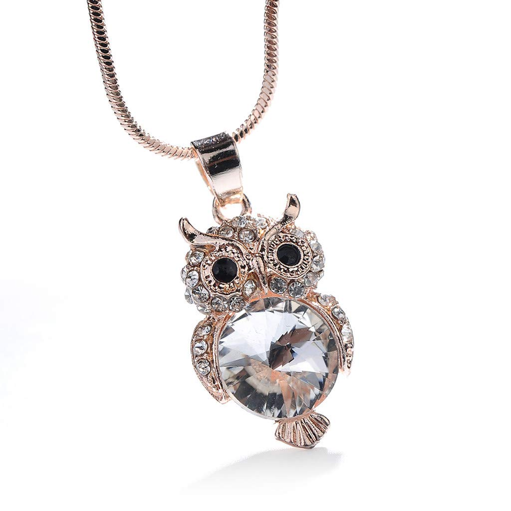 Necklaces for Women Girl, Hypothesis_X Silver Necklace Jewelry with Owl Pendant Necklaces for Mom Friend