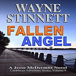 Fallen Angel: A Jesse McDermitt Novel