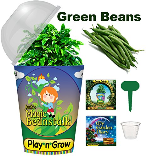Children's Organic Window Garden Plant Kit - Jack's Magic Beanstalk - Complete Indoor Grow Set - Seeds, Soil, Planter, Greenhouse Dome, Water Tray, 1 oz. Cup, Growing Guide, Diary. Educational Gift. (Childrens Seed Kit)