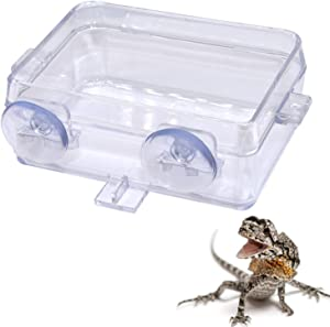 Besimple Suction Cup Reptile Feeder Food Dish Bowl Anti-Escape Dish Reptiles Food Container for Gecko Tortoise Snakes Iguana Lizard