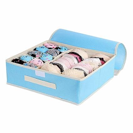 10 rejillas plegable organizador para calcetines, ropa interior, brazo, Azul