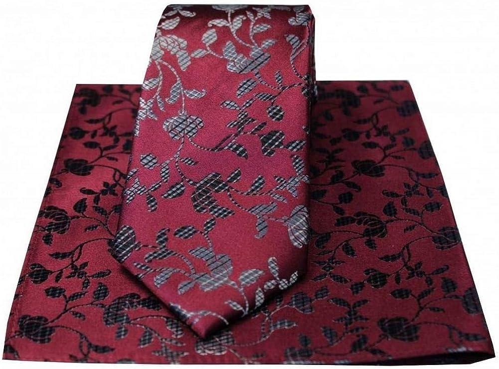 David Van Hagen - Juego de corbata y pañuelo para hombre, diseño ...