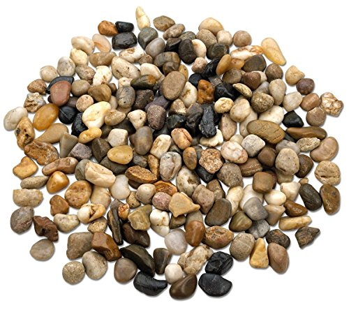 2 Pounds Decorative River Rock Stones - Natural Polished Mixed Color Stones Use In Glassware, Like Vases, Aquariums And Terrariums To Enhance The Appearance, By Katzco (Decorative Terrarium)