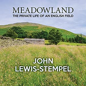 Meadowland Audiobook