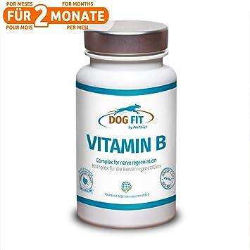 Complejo DOG FIT by PreThis VITAMIN B para perros | Para el sistema nervioso, la