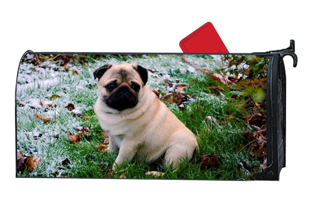 BABBY Gentle Pug Mailbox Cover Rust-Proof Mail Box Covers Large Capacity Post Mouth For Letter/Newspapers