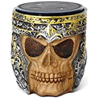 HAHOME Classic Resin Skull Statue Stand for Echo Dot 2nd Generation Speaker