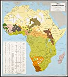 Historic Map | 1996 Africa, ethnolinguistic groups | Antique Vintage Reproduction