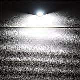 Lh&Fh Solar LED Garden Body Sensor Waterproof Home Wall Lamp , white