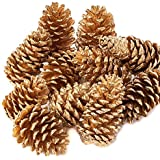 Factory Direct Craft Package of Rich Gold Painted Natural Pinecones for Christmas Holiday Decorating