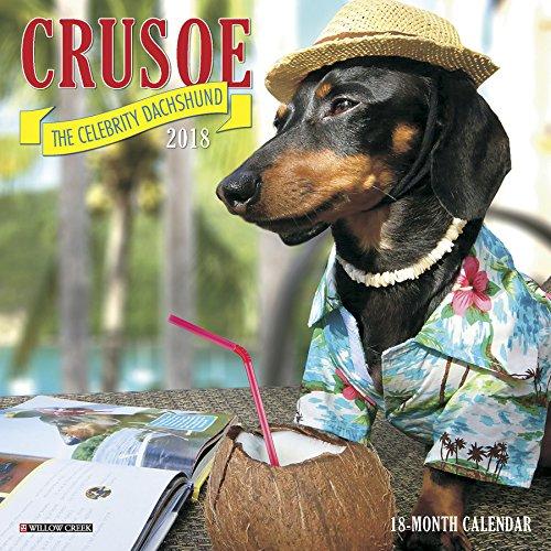Crusoe the Celebrity Dachshund 2018 Mini Wall Calendar
