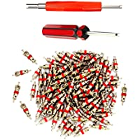 Z&D Valve Core Remover with 100 Pcs Car Truck Replacement Tire Tyre Valve Stem Core Dual Single Head Valve Core Remover Tire Repair Tool Set (Tire Repair Tool Set)