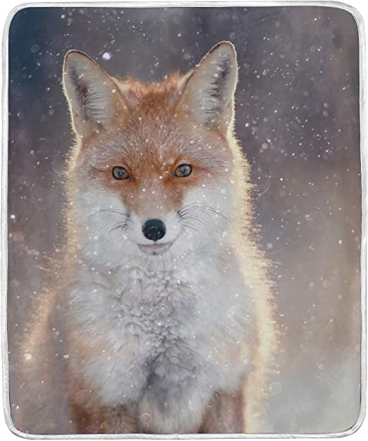 Birthday Card Beige wildlife Fox  Wildlife Unisex Cute