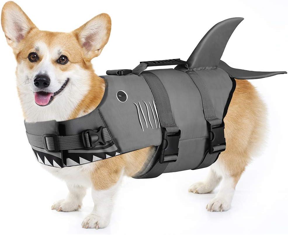 Amazon.com : Petacc Dog Life Jacket Pet Floatation Vest Dog Lifesaver Dog Life Preserver for Water Safety at The Pool, Beach, Boating (M, Shark) : Pet Supplies