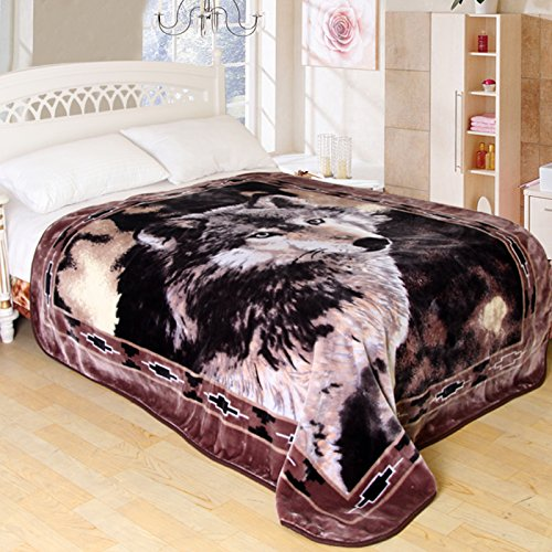 ShiGo Heavy Weight Super Soft Luxury Twin size Blanket 60